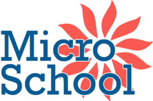 MicroSchool Dark Blue QHD